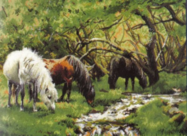 Horse and Stream Cross Stitch Kit